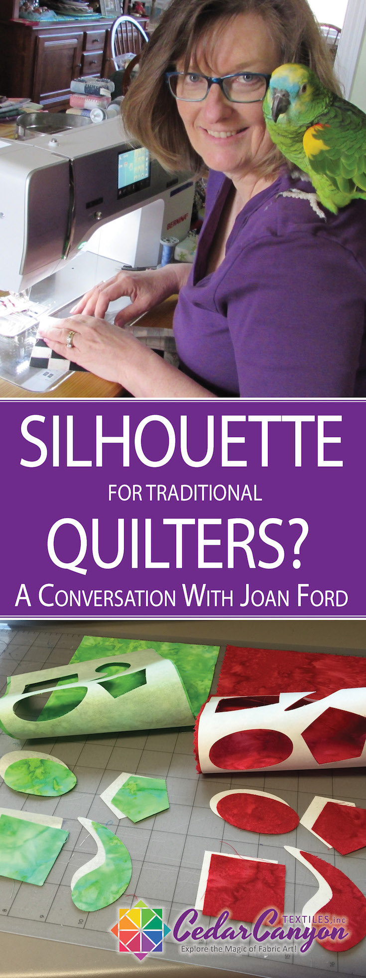 Silhouette Traditional Quilter