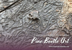 Pine Beetle Art: A Bit of Oddball Inspiration