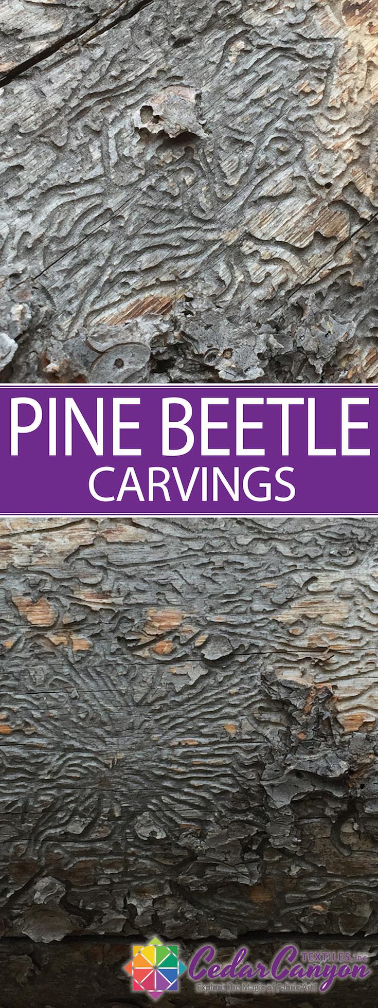 pine-beetle-art-pin