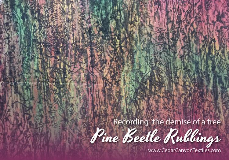 pine-beetle-rubbings-fb